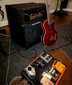 """Epiphone """"Allen Woody"""" Rumblekat Signature Bass"""
